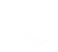 grupo_cerinnov